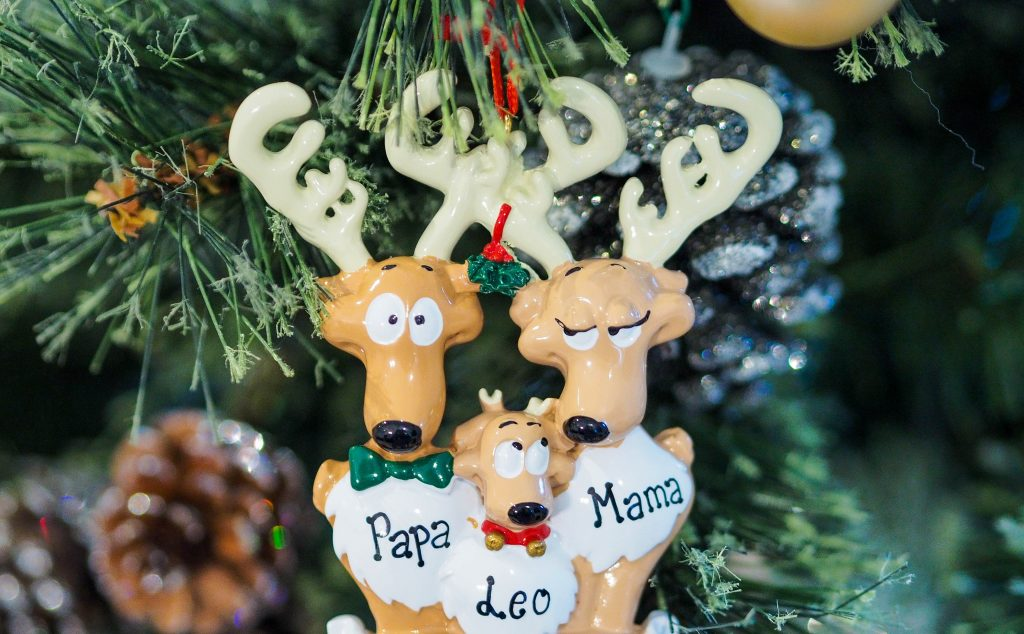Reindeer Christmas ornament with the words mama, papa and Leo inscribed on it.